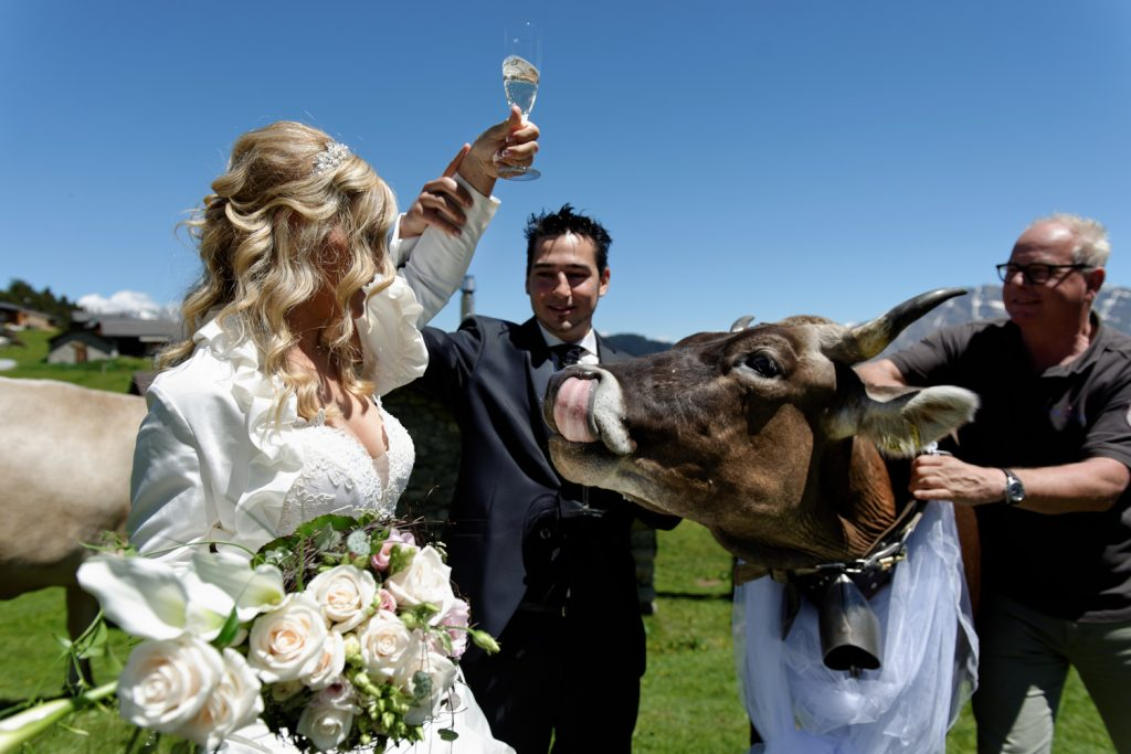 Ihre Hochzeit Hamilton Lodge Wallis