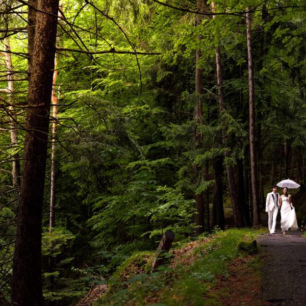 Hochzeitsfotografie - Foto Sessions in der freien Natur